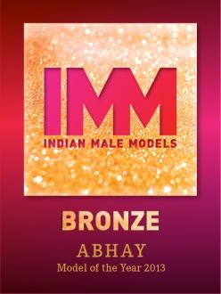 Logo_IMM_Award_Bronze