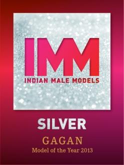 Logo_IMM_Award_SILVER